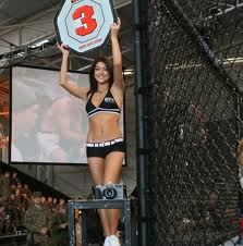 UFC MMA Sports Betting REview Sites