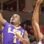 LSU Tigers 2014 NCAAB